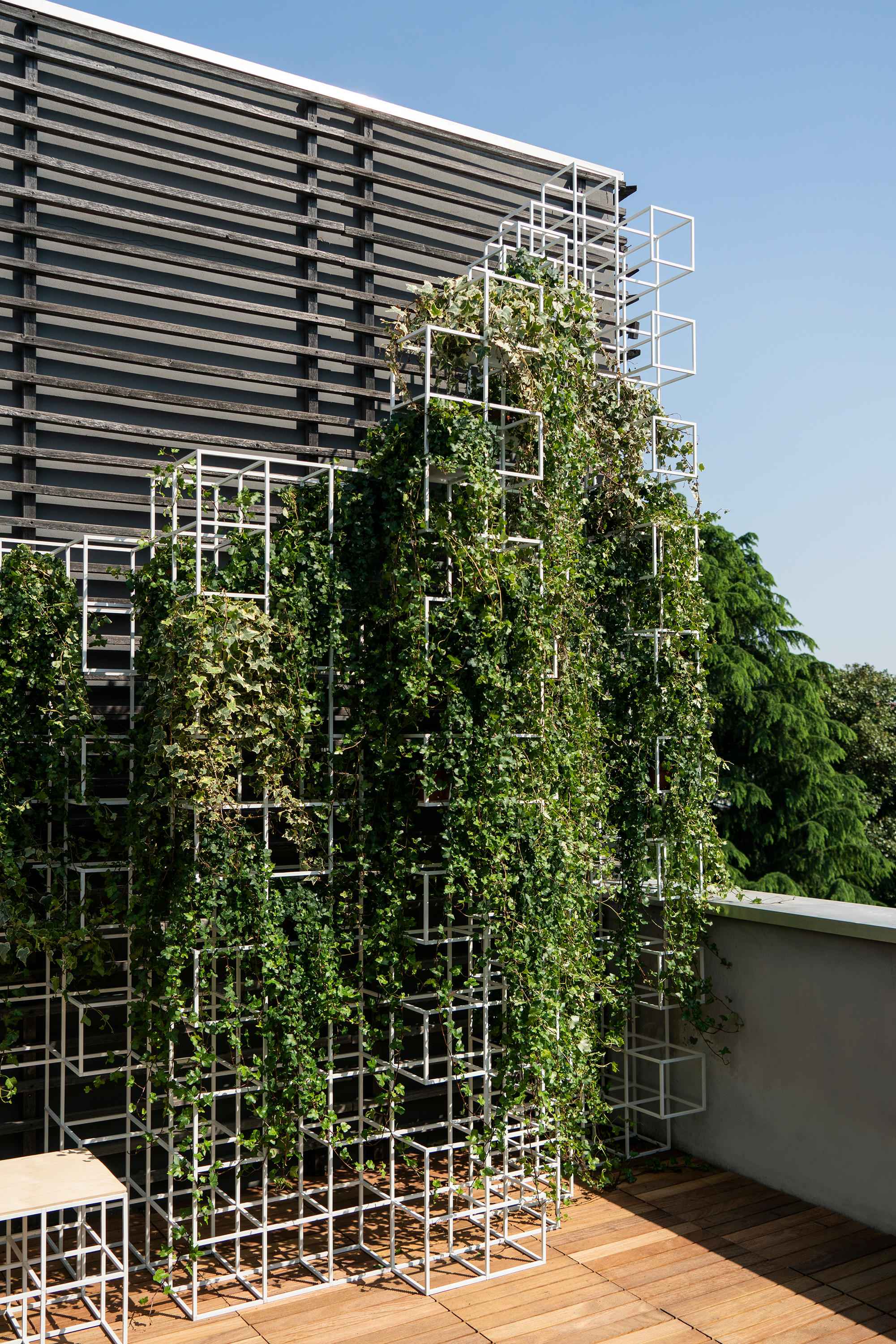 ipot modular system by ipot green facades planting supercake72 ipot