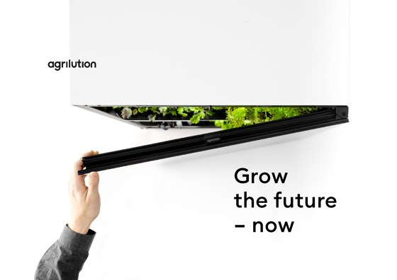 Grow the Future - Now