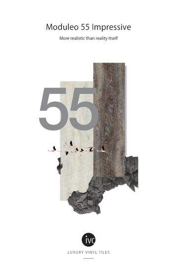 Moduleo 55 Impressive