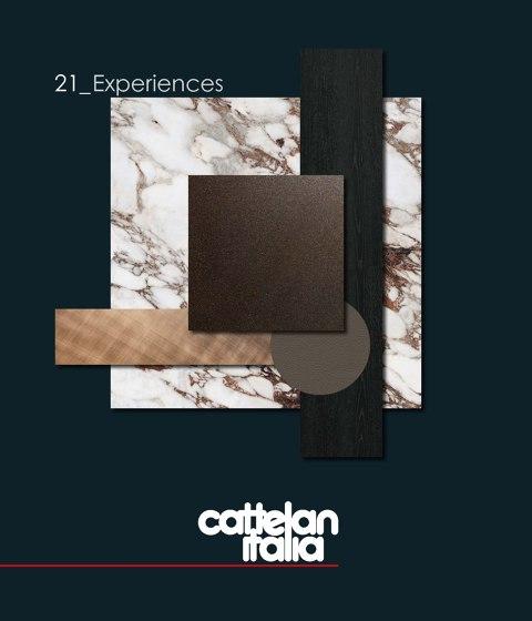 21_Experiences  (ru, zh)