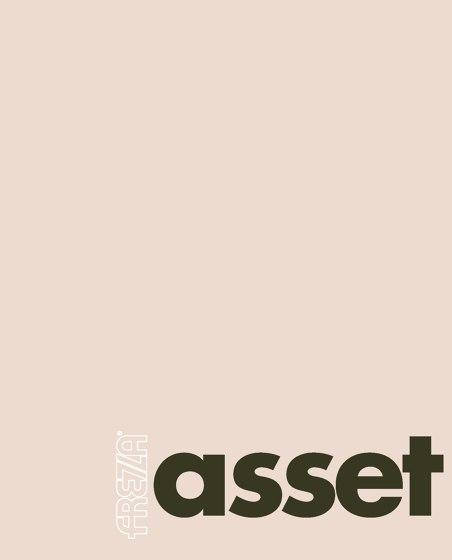 Asset Catalog