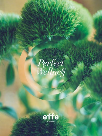 Perfect Wellness | Catalogue 2019 (en, it)