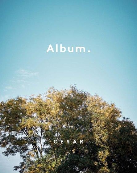 Album.