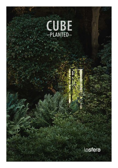 Cube planted