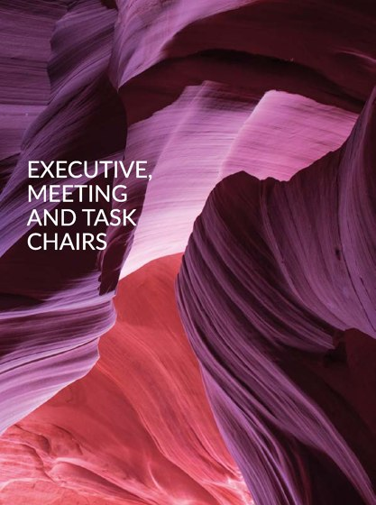 Executive | Meeting | Task Chairs