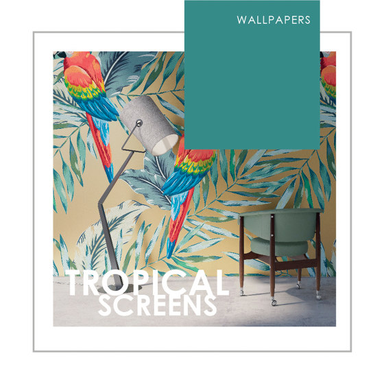 WALLPAPERS | TROPICAL SCREENS