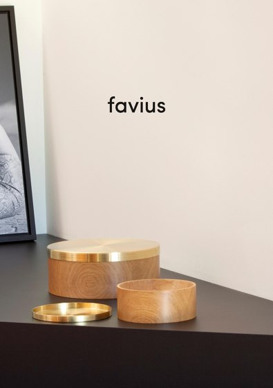 favius Catalogue 2017