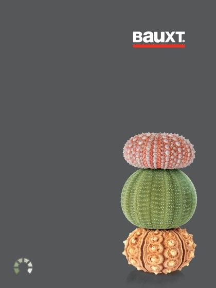 Bauxt Catalogue 2017 IT DE FR ES