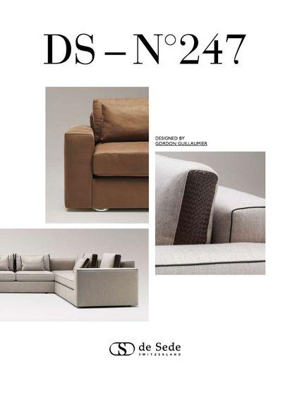 DS 247 Brochure