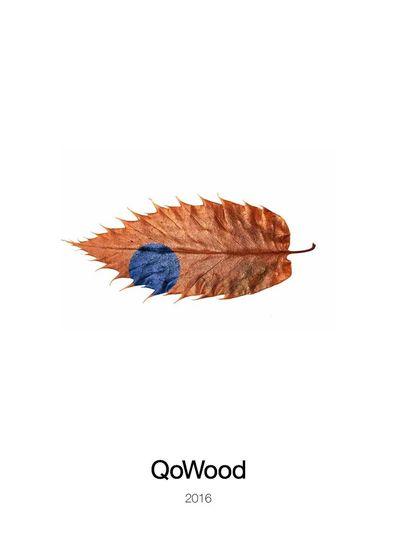 QoWood 2016