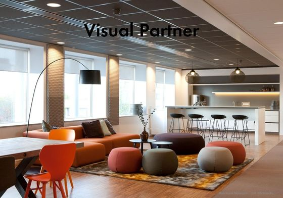 Visual Partner 2013