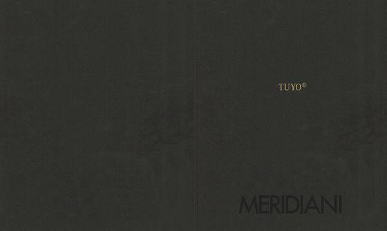 Meridiani Tuyo