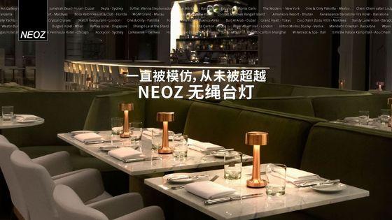 NEOZ cordless lamp brochure chinese