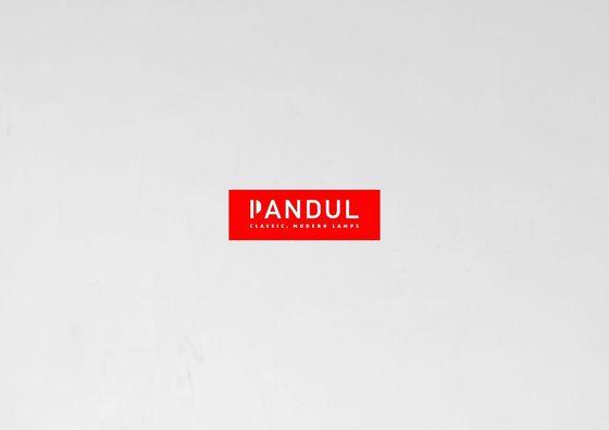 Pandul Image brochure