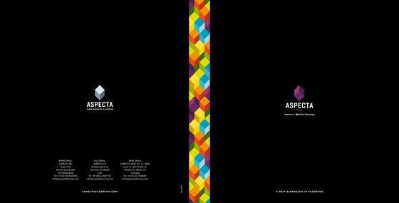 Aspecta TEN Brochure