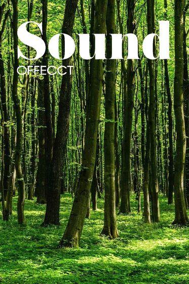 Offecct Sound 2015