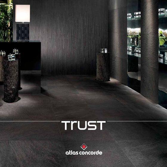 Trust 2017