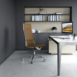 Sedute Ufficio | Direzionali & Operative