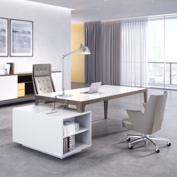 Executive & Meeting Desks
