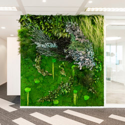 Green Walls Sparse Forest