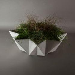 Kronen Bowl