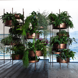 10th Vertical Garden