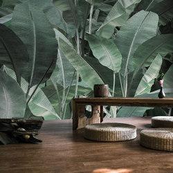jungle | thai banano