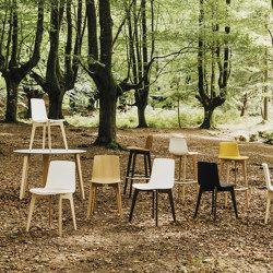 Lottus Wood