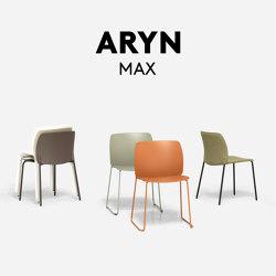 Aryn Max