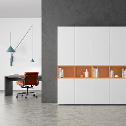 basic S Cabinet system