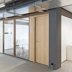 Doors for Partition Systems