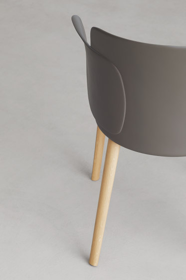 Paper | chair with solid oak wooden frame by Desalto