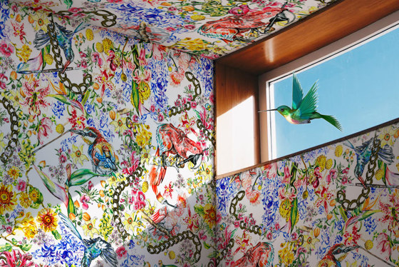 Painting Birds | artist wallpaper by Ginny Litscher