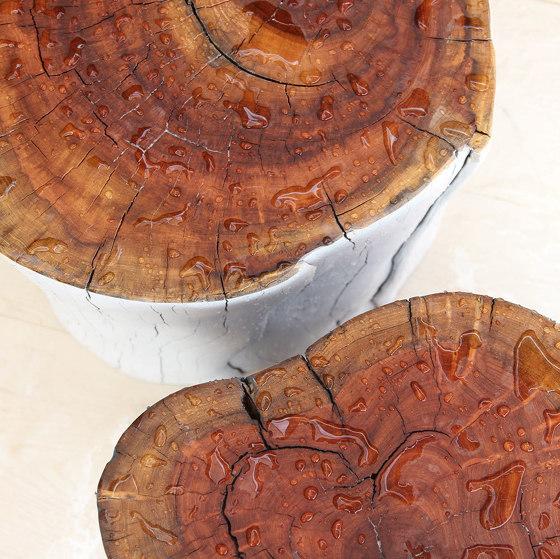 Chroma Outdoor Log Tables de Pfeifer Studio