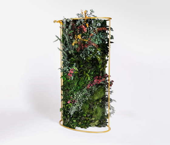 G-Dividers di Greenmood