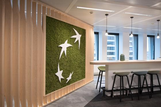 Green Wall Lichen by Greenmood