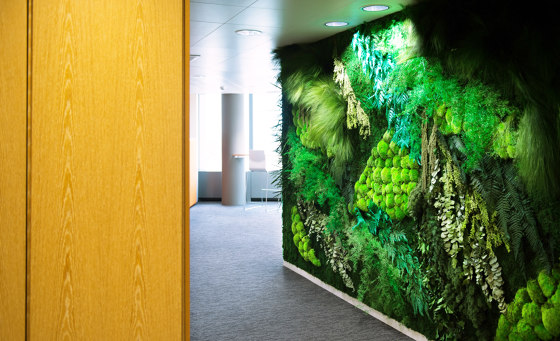 Green Walls Dense Forest di Greenmood