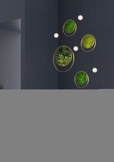 Rings di Greenmood
