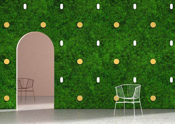 Twinkles Green Wall by Greenmood