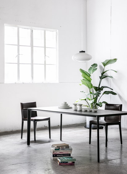 Taylor Dining Chair by Stellar Works