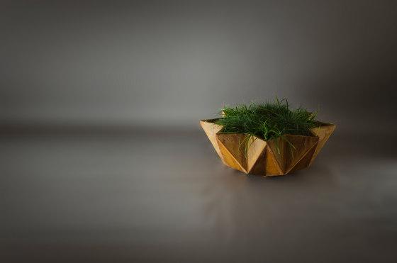 Kronen Bowl Planter, White by Adam Christopher Design