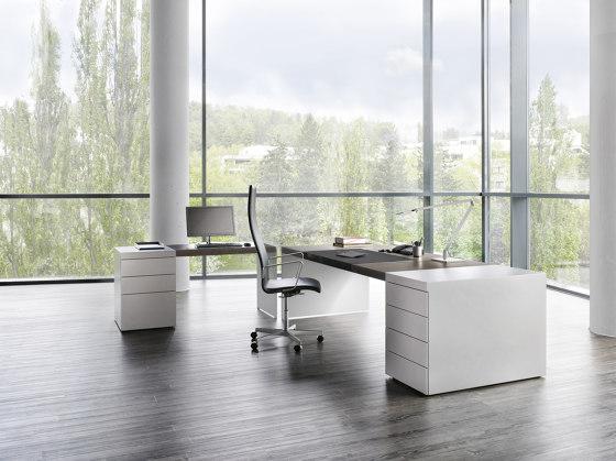 Size desk by RENZ