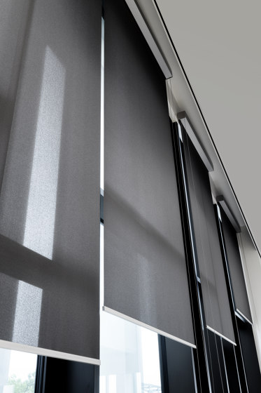 Fascia  Manual / Motorized by Coulisse