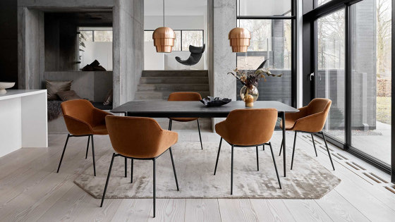 Vienna Chair D105 by BoConcept