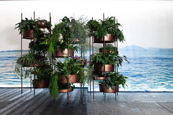 10th Vertical Garden by Exteta