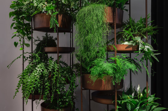 10th Vertical Garden di Exteta
