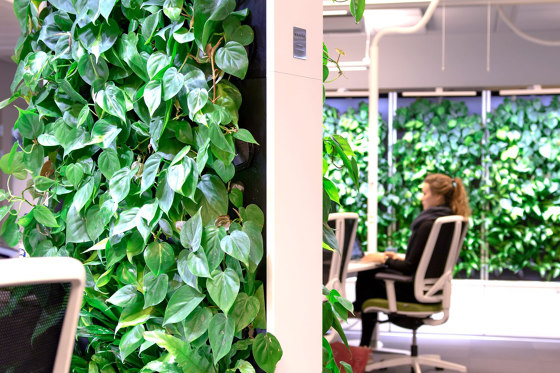 Naava Green Healthech Wall duo by Teknion