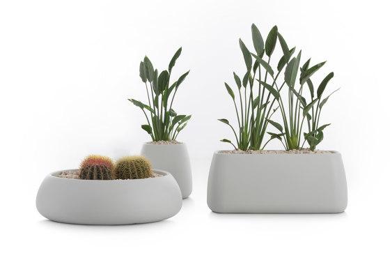 Gobi Plant Pot 3 by Diabla