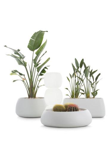 Gobi Plant Pot 5 by Diabla