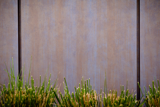Rust | Aspen Patina by Pure + FreeForm